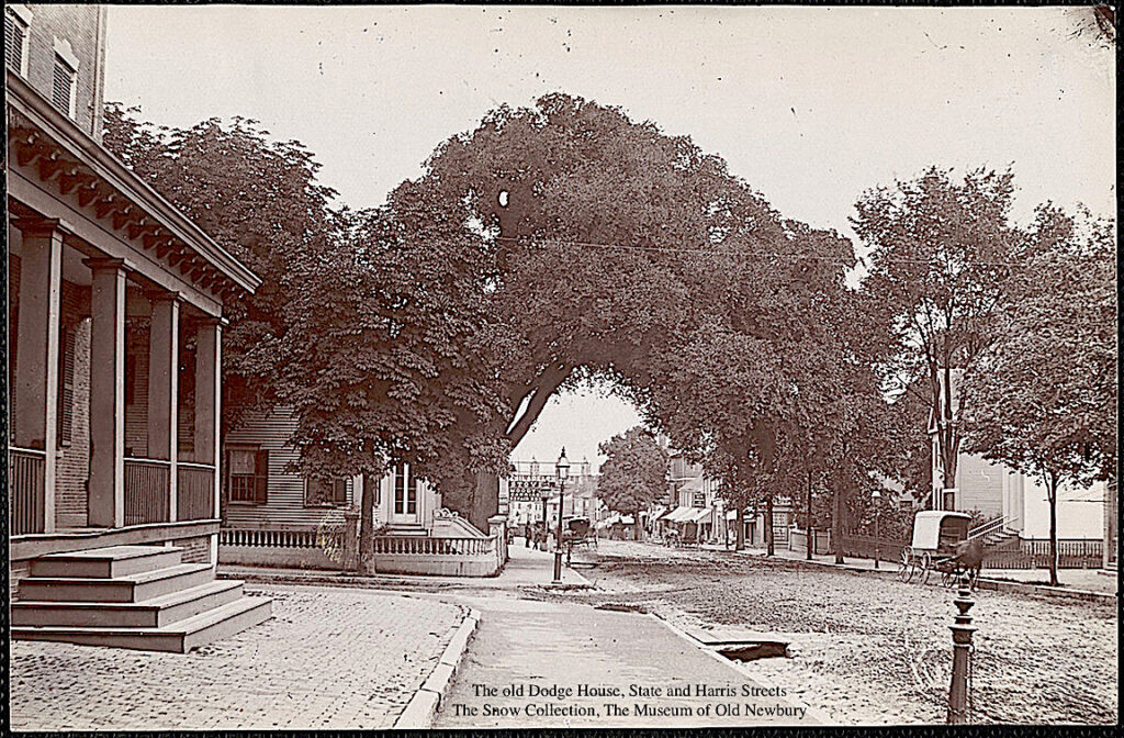 The Old Dodge House State and Harris Streets Newburyport MA